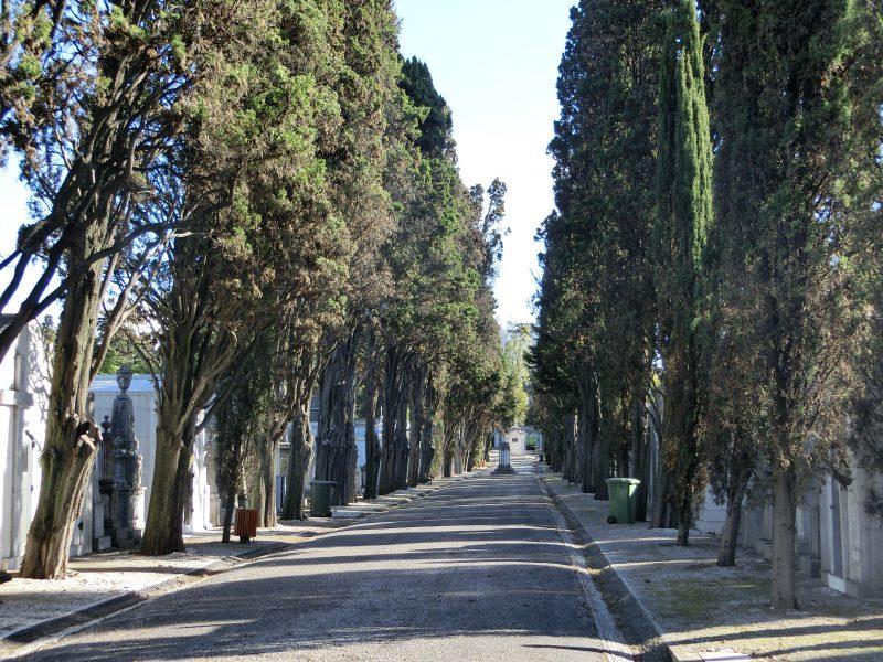 Aussicht vom Cemitério dos Prazeres über den Tejo und auf die Ponte 25 de Abril