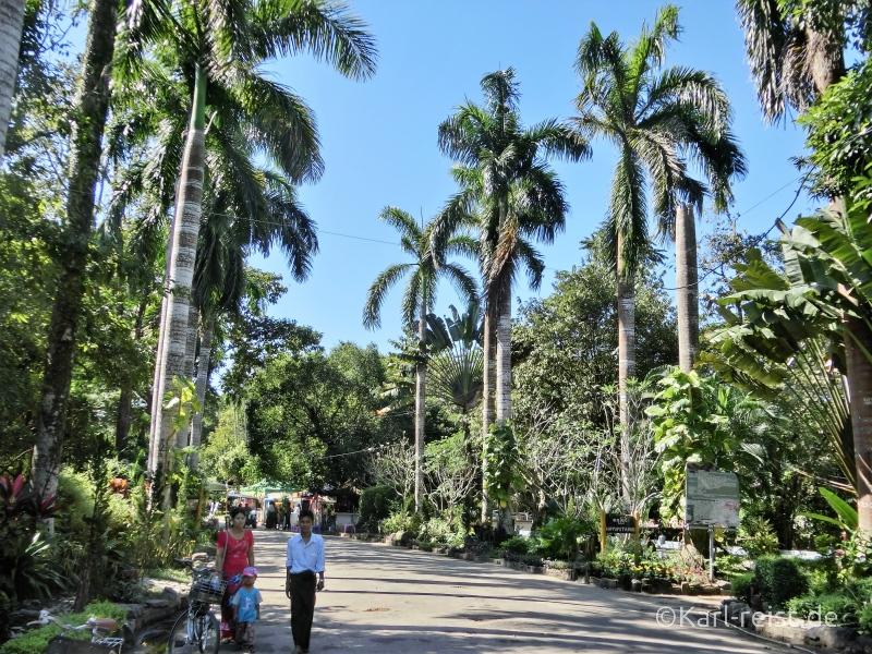 Yangon Zoo Spaziergänger