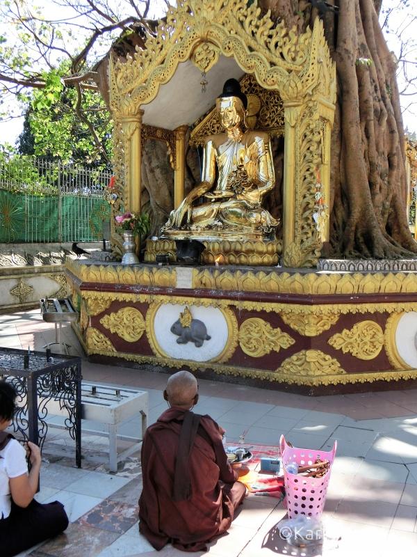 Nonne beim Gebet in der Shwedagon Pagode.