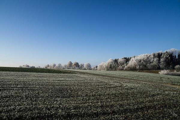 Winter Biberach an der Riß