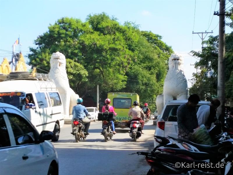 Löwen in der Pinya Street