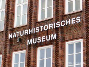 Eingang vom Naturhistorischen Museum Braunschweig