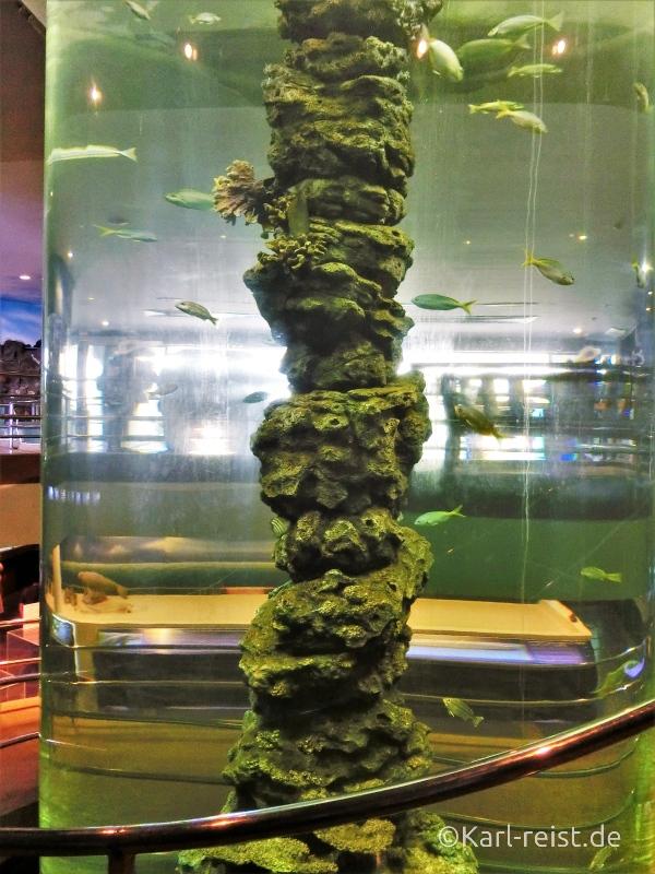 Große Säule im Rayong Aquarium Ban Phe