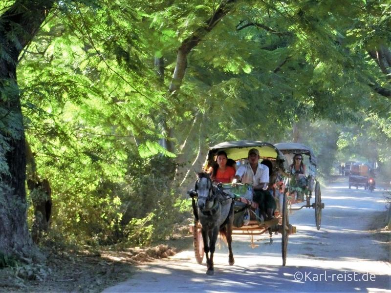 Pferdekutsche auf idyllischer Straße