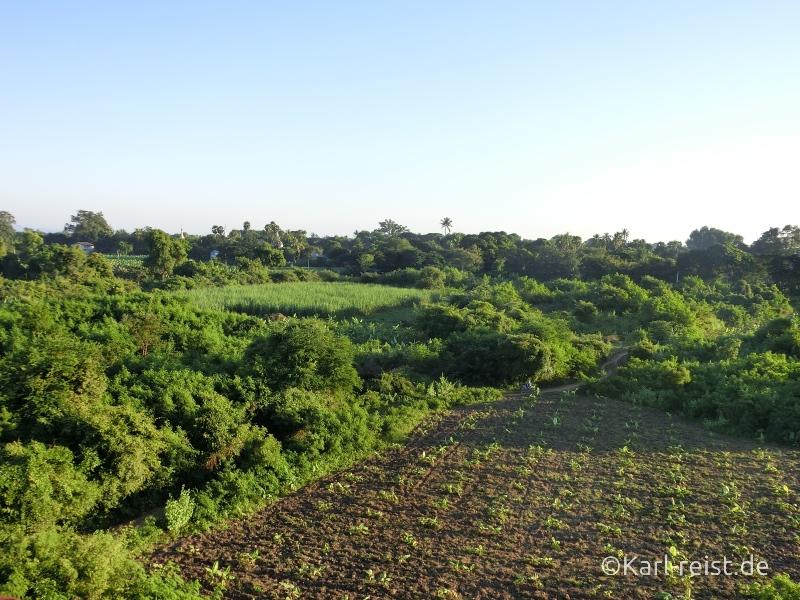Aussicht von Wachturm über Felder