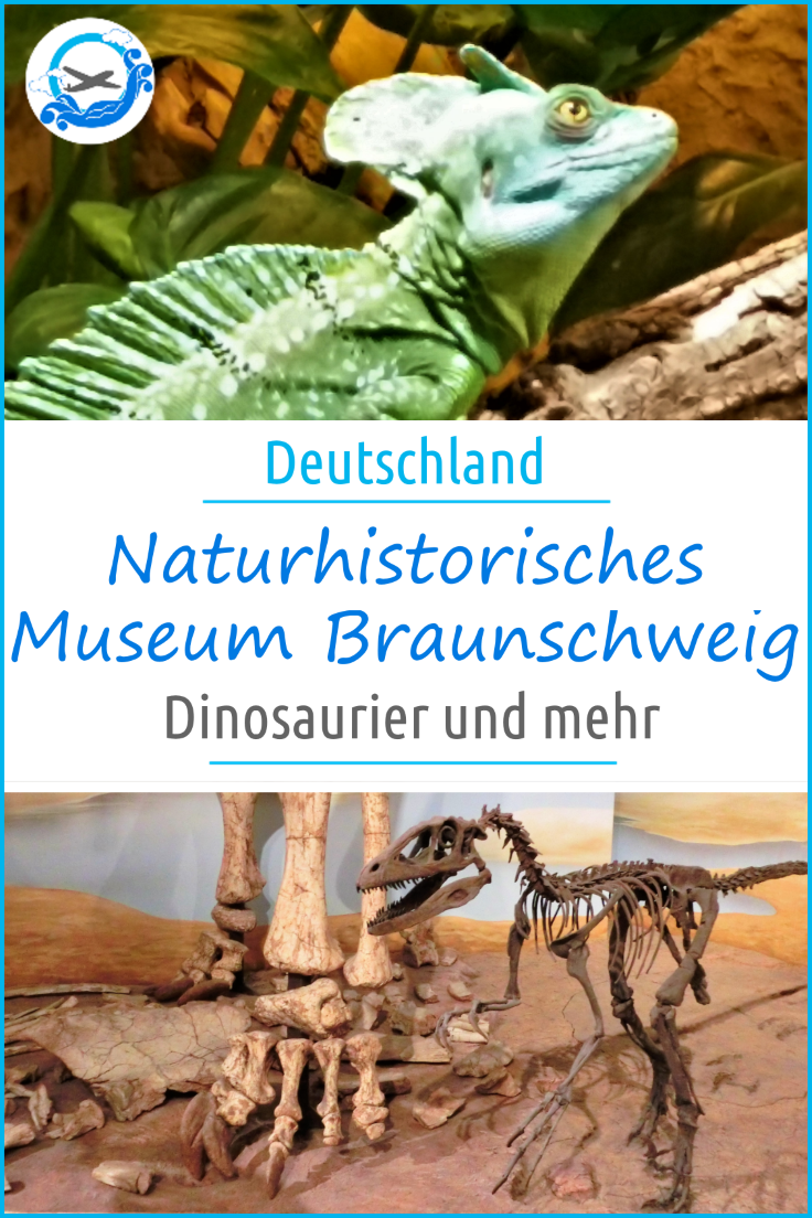 Pinterest Braunschweig Museum