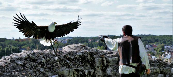 Chauvigny: Familienfreundliche Stadt mit Greifvogelschau und Fahrraddraisine