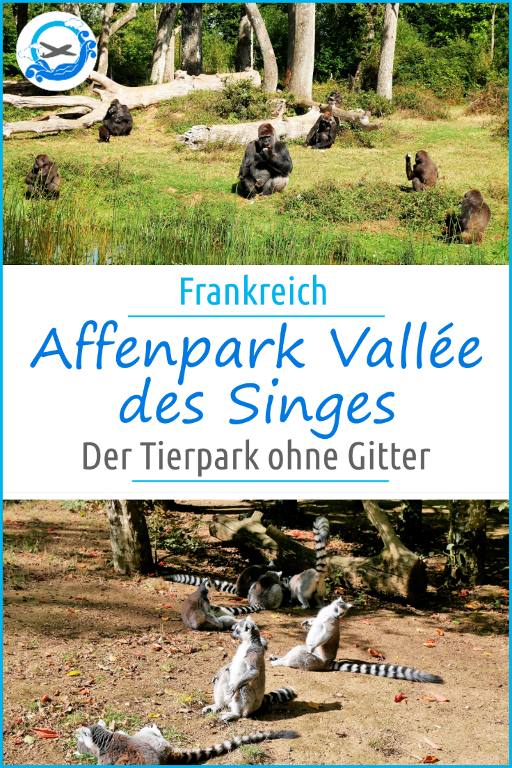 Pinterest Vallee des Singes