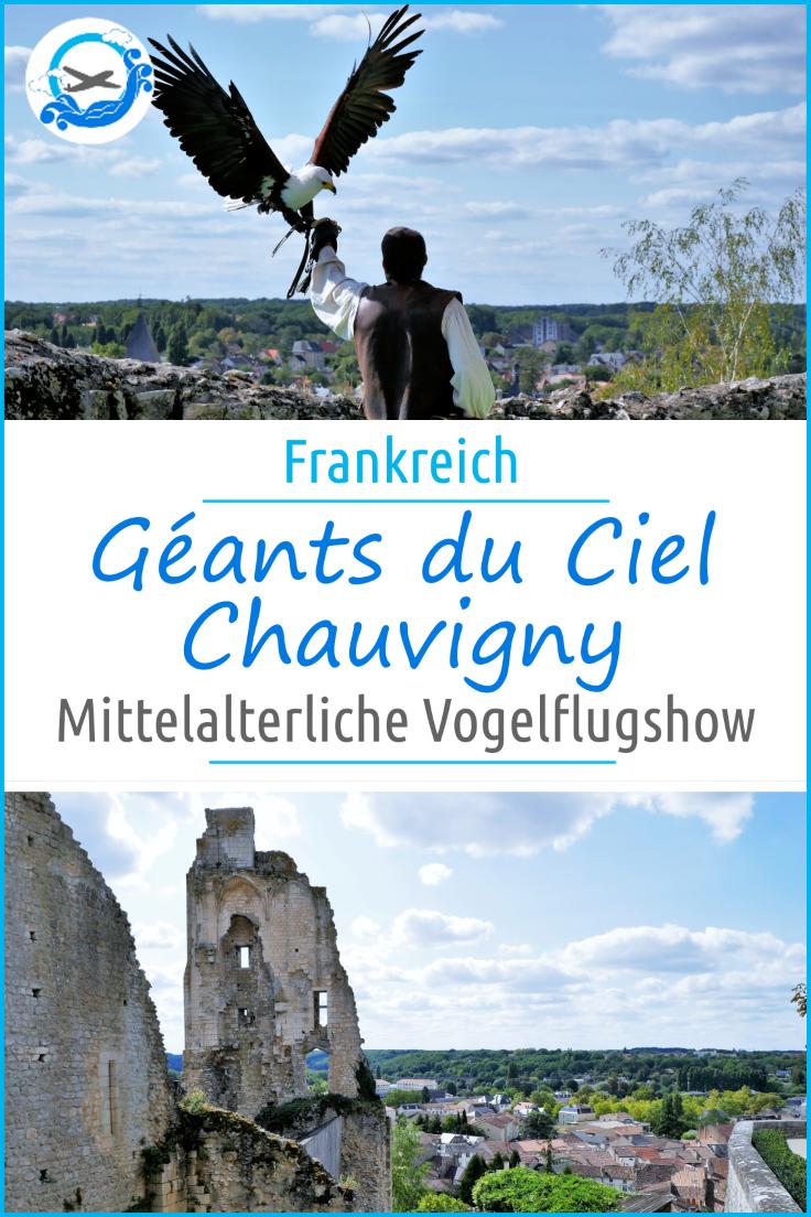 Pinterest Chauvigny Geants Du Ciel