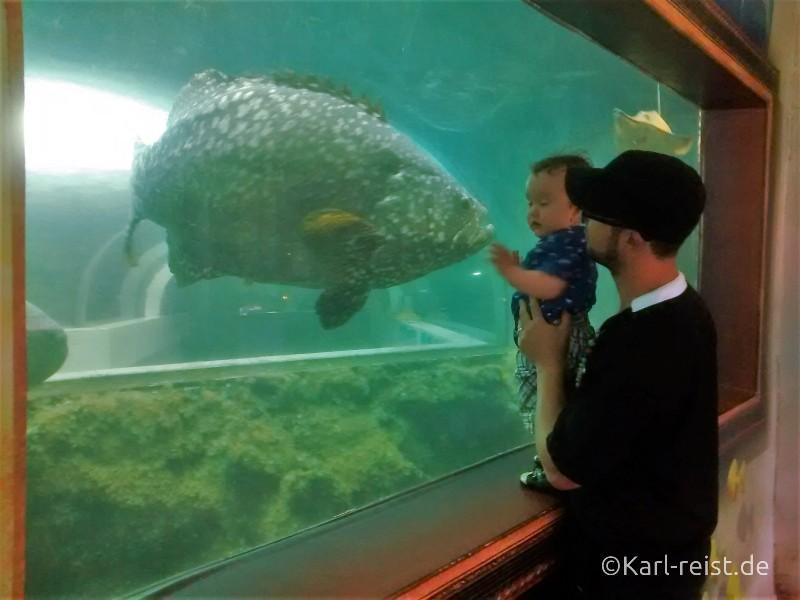 Khun Krabaen Aquarium Chanthaburi
