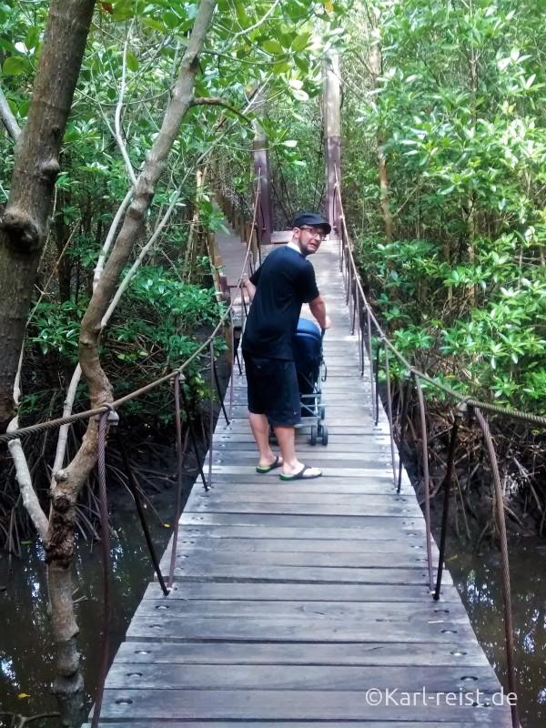 Chanthaburi Khun Krabaen Mangrove Trail 6