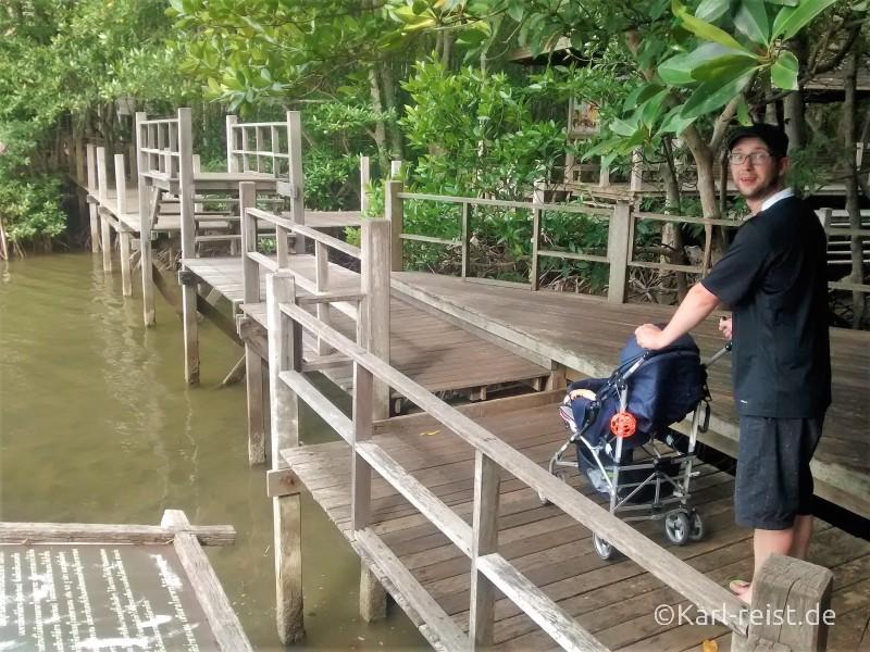 Chanthaburi Khun Krabaen Mangrove Trail