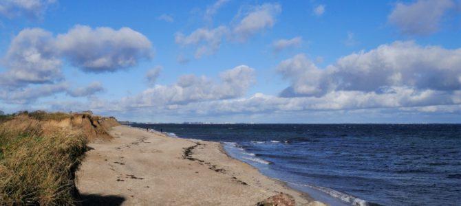 Ferienhäuser Süssauer Strand: Totale Entspannung im Kurzurlaub an der Ostsee