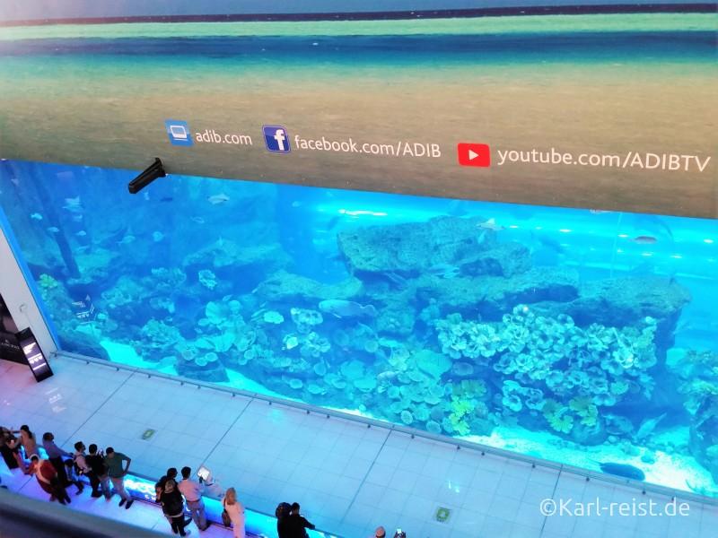Dubai Aquarium Mall