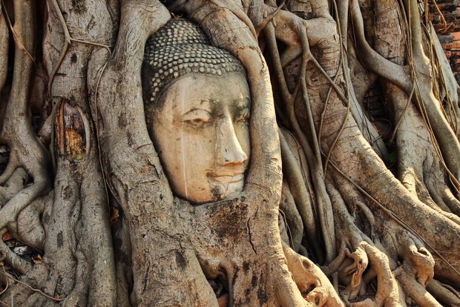 Wat Maha That Thailand