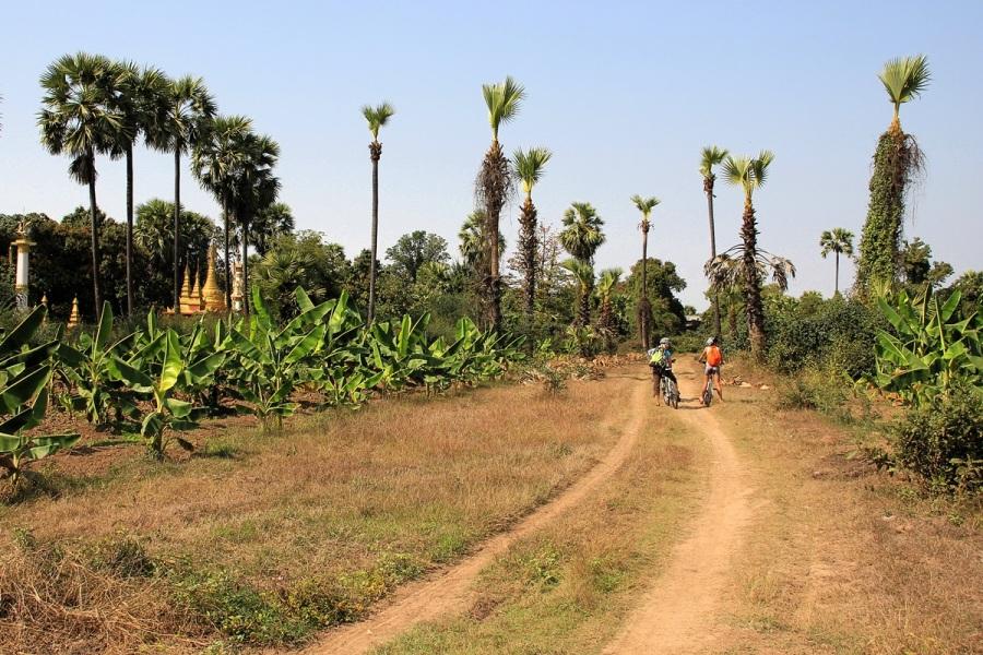 Felder und Tempel bei Mandalay