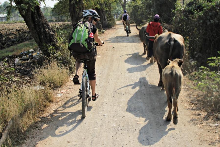 Fahrradtour Mandalay auf Inwa