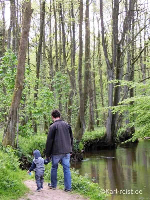 Wildpark Eekholt Spazierwege