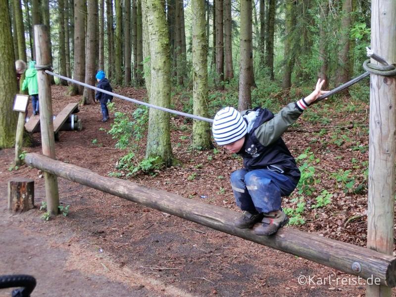 Wildpark Eekholt Klettern