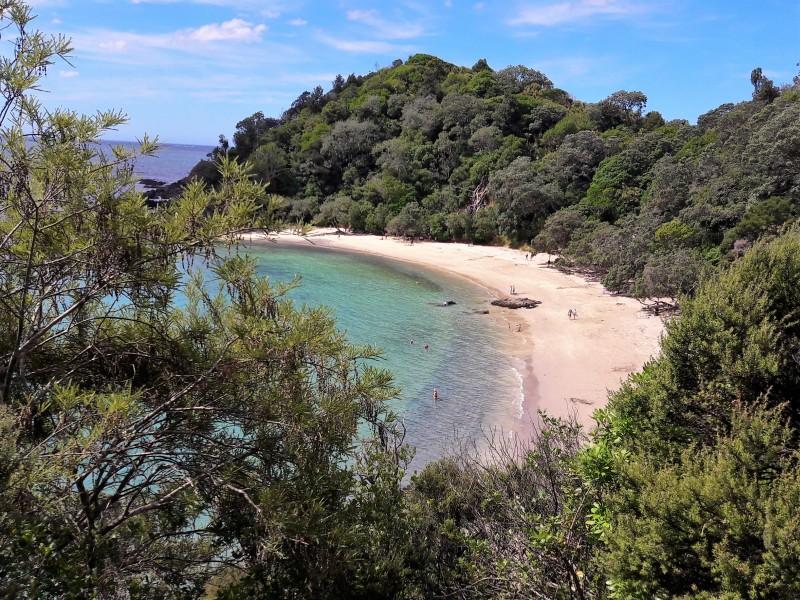 Whale Bay - Tutukaka Coast Neuseeland