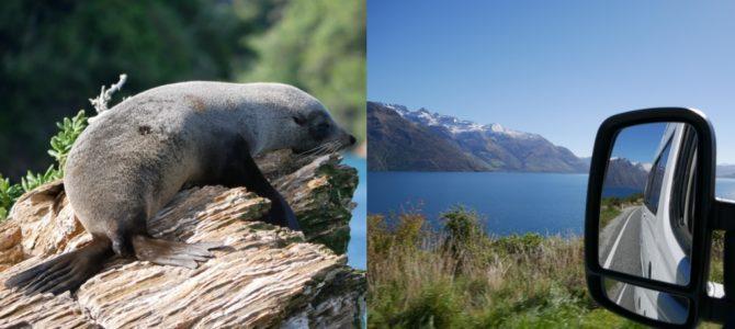 Unsere schönsten Bilder von Neuseelands Südinsel