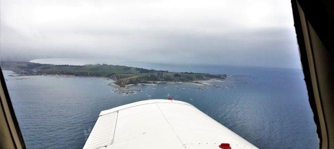 Kaikoura: Der perfekte Start unserer Neuseeland Rundreise mit dem Camper