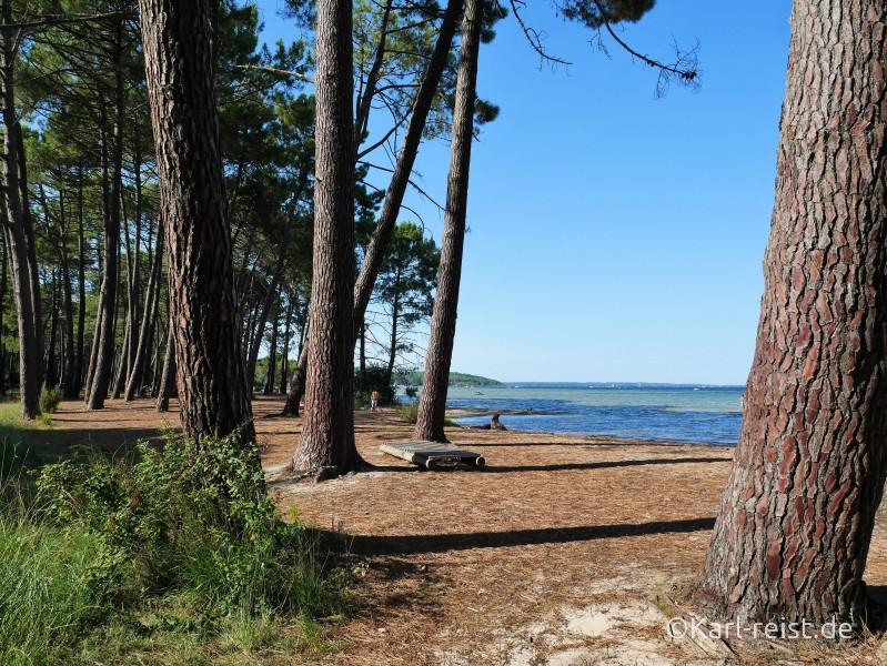 Biscarrosse Lac Cazaux-Saguinet