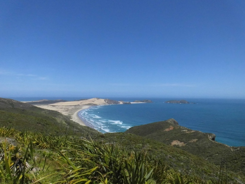 Am Cape Reinga.