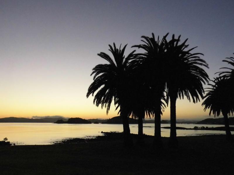 Sonnenaufgang am Hotel in Paihia