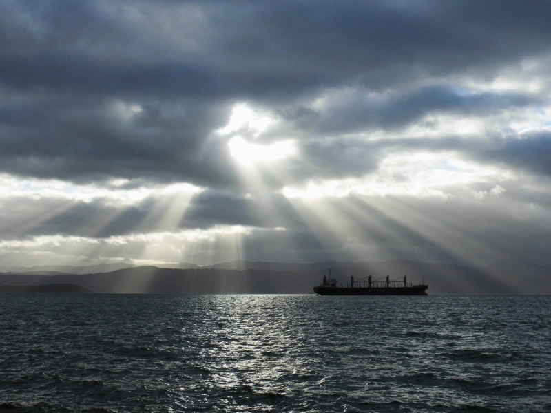 Wellington Hafen Sonnenaufgang