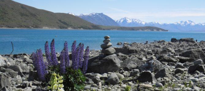 """Die """"Herr der Ringe""""-Reise geht weiter – Antjes Rundreise auf Neuseelands Südinsel [Gastbeitrag Teil 2]"""
