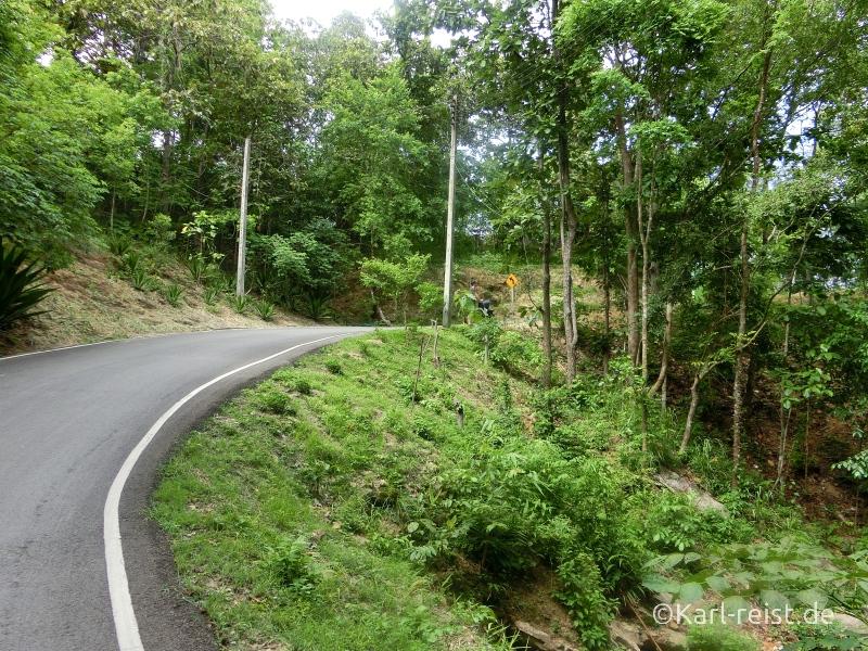 Chiang Mai Zoo Straße