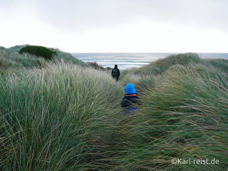 Zugang zum Big Beach Aramoana Neuseeland