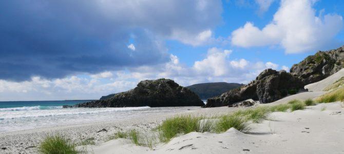 Neuseeland schönster Strand? Ganz klar in Aramoana gegenüber der Otago Peninsula