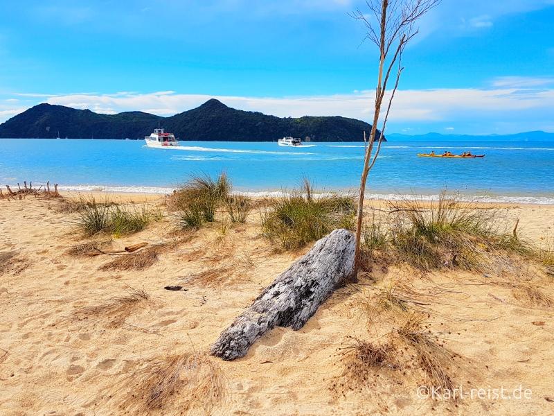 Rundreise Neuseeland Südinsel 3 Wochen Abel Tasman Park Apple tree bay