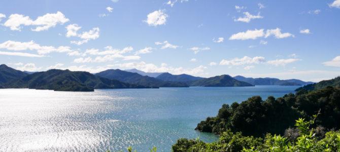 Fototour: Wunderschöne Landschaft in den Marlborough Sounds Neuseeland