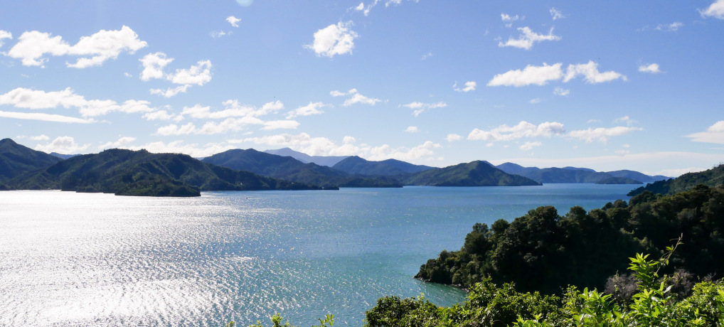 Marlborough Sounds Neuseeland Südinsel