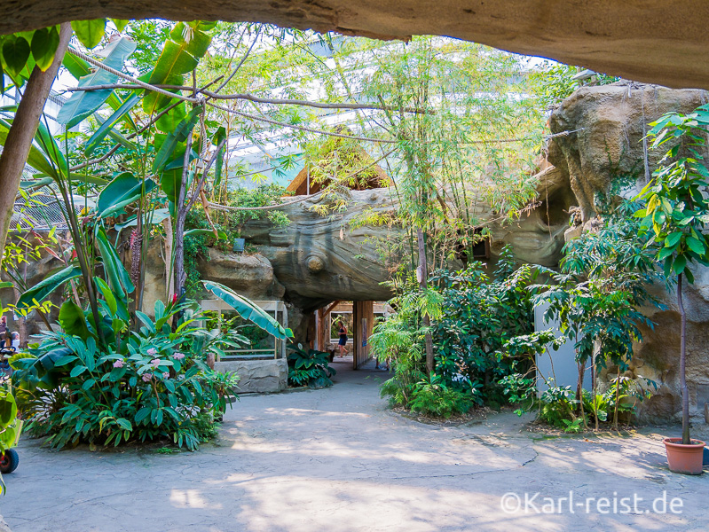 Rostock Zoo Darwineum Innenansicht